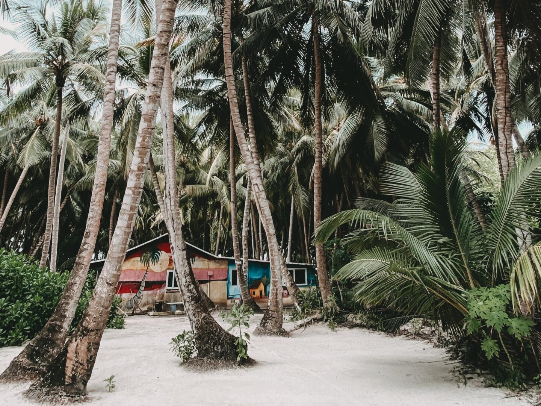 Isla Saona - Punta Cana - Dominikanische Republik